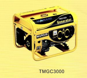 TMGC3000